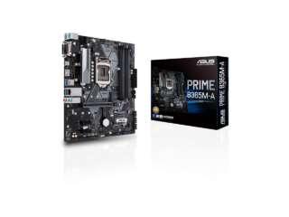 مادربرد ایسوس PRIME B365M-A/CSM