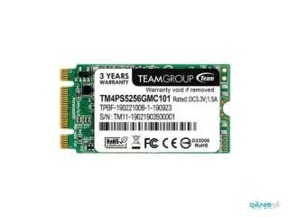 اساسدی تیم گروپ Lite TM4PS 256GB M.2